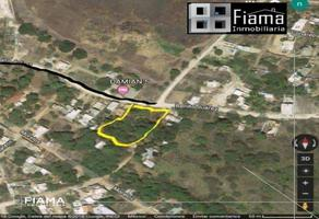 Foto de terreno habitacional en venta en  , la peñita de jaltemba centro, compostela, nayarit, 13988923 No. 01