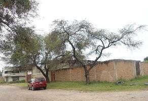 Foto de terreno habitacional en venta en la piedrera , las pintas, el salto, jalisco, 5703902 No. 01