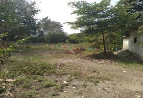 Foto de terreno habitacional en venta en  , la piragua, san juan bautista tuxtepec, oaxaca, 0 No. 01