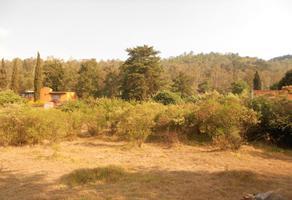 Foto de terreno habitacional en venta en la playa , morelos, pátzcuaro, michoacán de ocampo, 18848762 No. 01
