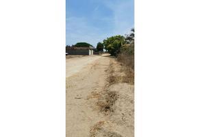 Foto de terreno habitacional en venta en  , la playa, san pedro mixtepec dto. 22, oaxaca, 0 No. 01