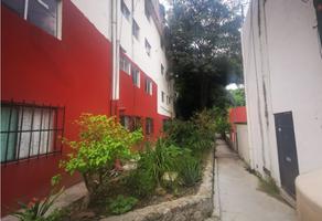 Foto de departamento en renta en  , la pradera, cuernavaca, morelos, 0 No. 01