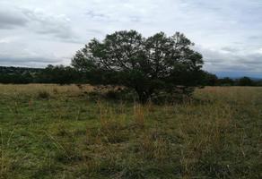 Foto de terreno habitacional en venta en la presa 51 , san martin xaltocan, xaltocan, tlaxcala, 15226011 No. 01