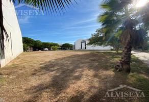 Foto de terreno habitacional en venta en  , la primavera, culiacán, sinaloa, 0 No. 01