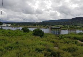 Foto de terreno habitacional en venta en  , la primavera, zapopan, jalisco, 5439045 No. 01