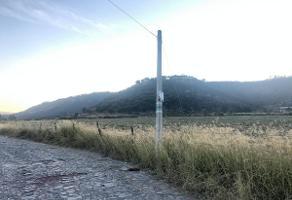 Foto de terreno habitacional en venta en  , la primavera, zapopan, jalisco, 0 No. 01