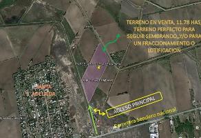 Foto de terreno habitacional en venta en  , la rosita, matamoros, tamaulipas, 0 No. 01