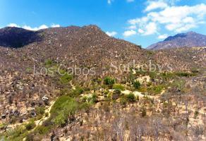 Foto de terreno comercial en venta en la soledad , san josé del cabo centro, los cabos, baja california sur, 14689668 No. 01