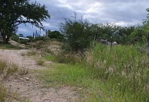 Foto de terreno habitacional en venta en  , la soledad, san lorenzo cacaotepec, oaxaca, 14289525 No. 01
