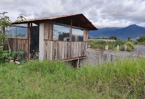 Foto de terreno habitacional en venta en  , la soledad, san lorenzo cacaotepec, oaxaca, 14289533 No. 01