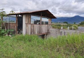 Foto de terreno habitacional en venta en  , la soledad, san lorenzo cacaotepec, oaxaca, 0 No. 01