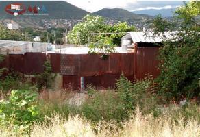 Foto de terreno habitacional en venta en  , la soledad, santa cruz xoxocotlán, oaxaca, 0 No. 01