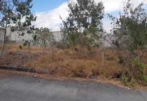 Foto de terreno habitacional en venta en la tehuixtlera s/n , alpuyeca, xochitepec, morelos, 0 No. 01