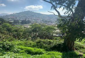 Foto de terreno habitacional en venta en  , la teresona, toluca, méxico, 15966726 No. 01