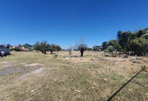 Foto de terreno comercial en venta en  , la tijera, tlajomulco de zúñiga, jalisco, 14286560 No. 01