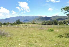 Foto de terreno habitacional en venta en la trinidad 102 , tlalixtac de cabrera, tlalixtac de cabrera, oaxaca, 17213594 No. 01