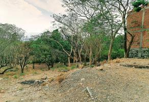 Foto de terreno habitacional en venta en  , la trinidad, comala, colima, 0 No. 01