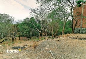 Foto de terreno habitacional en venta en  , la trinidad, comala, colima, 22194838 No. 01