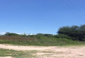 Foto de terreno habitacional en venta en la trinidad s/n , la trinidad, san francisco de los romo, aguascalientes, 0 No. 01