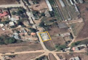 Foto de terreno habitacional en venta en la union , rancho de los audelo, san pedro ixtlahuaca, oaxaca, 15742572 No. 01