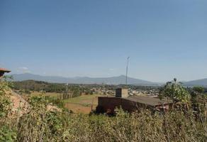 Foto de terreno habitacional en venta en  , la valenciana, pátzcuaro, michoacán de ocampo, 0 No. 01