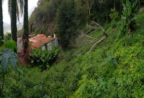 Foto de terreno habitacional en venta en la vista 10, chulavista, chapala, jalisco, 0 No. 01