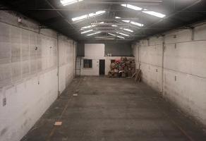 Foto de nave industrial en venta en lago chalco , ahuehuetes anahuac, miguel hidalgo, df / cdmx, 10932357 No. 01