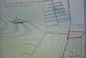 Foto de terreno habitacional en venta en  , lagos de moreno, lagos de moreno, jalisco, 11732404 No. 01