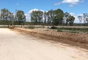 Foto de terreno habitacional en venta en  , lagos de moreno, lagos de moreno, jalisco, 11806346 No. 01