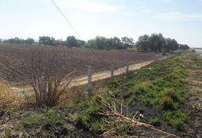 Foto de terreno habitacional en venta en  , lagos de moreno, lagos de moreno, jalisco, 6752685 No. 01