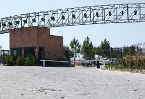 Foto de terreno habitacional en venta en  , lagos de moreno, lagos de moreno, jalisco, 7159126 No. 01
