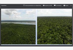 Foto de terreno comercial en venta en laguna 7 colores 1, la laguna, bacalar, quintana roo, 16882277 No. 01