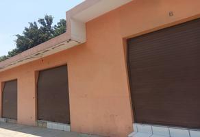 Foto de local en renta en laguna de alcozahue 223 , solidaridad, villa de álvarez, colima, 0 No. 01