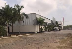 Foto de nave industrial en renta en  , laguna de la puerta, altamira, tamaulipas, 13351361 No. 01