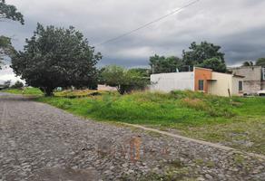 Foto de terreno habitacional en venta en laguna de pastores , solidaridad, villa de álvarez, colima, 18405573 No. 01