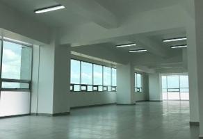 Foto de oficina en renta en laguna de términos , granada, miguel hidalgo, df / cdmx, 0 No. 01