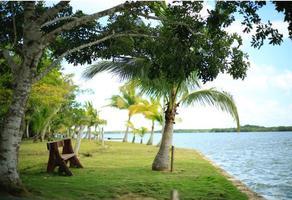 Foto de rancho en venta en  , laguna guerrero, othón p. blanco, quintana roo, 14574372 No. 01