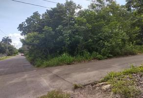 Foto de terreno habitacional en venta en  , laguna guerrero, othón p. blanco, quintana roo, 0 No. 01