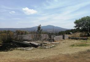 Foto de terreno habitacional en venta en  , lagunillas, lagunillas, michoacán de ocampo, 0 No. 01