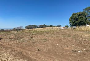 Foto de terreno habitacional en venta en las angelinas s/n , cuauhtémoc, colima, colima, 19350795 No. 01