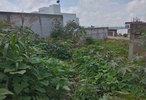 Foto de terreno habitacional en venta en  , las calandrias, tlayacapan, morelos, 0 No. 01