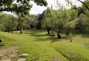 Foto de terreno habitacional en venta en las cañadas , bosques de san isidro, zapopan, jalisco, 0 No. 01
