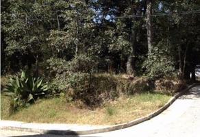 Foto de terreno habitacional en venta en  , las cruces, amozoc, puebla, 17636467 No. 01