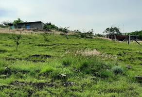 Foto de terreno habitacional en venta en las cruces lote numero 105 , benito juárez, villa de zaachila, oaxaca, 17461294 No. 01