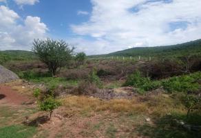 Foto de terreno habitacional en venta en las estacas 0, las estacas, tlaltizapán de zapata, morelos, 16823151 No. 01