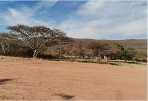 Foto de terreno habitacional en venta en las estacas 20, las estacas, tlaltizapán de zapata, morelos, 0 No. 01