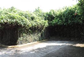 Foto de terreno habitacional en venta en las fincas, jiutepec , las fincas, jiutepec, morelos, 12759127 No. 01