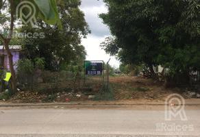 Foto de terreno habitacional en venta en  , las flores, ciudad madero, tamaulipas, 0 No. 01
