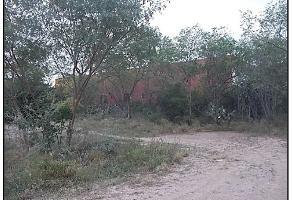 Foto de terreno habitacional en venta en  , las flores, guadalupe, nuevo león, 0 No. 01