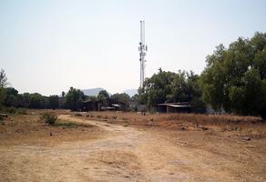 Foto de terreno industrial en venta en las flores , la magdalena atlicpac, la paz, méxico, 0 No. 01